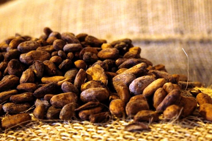 Exprésate con chocolate 100% mirandino se desarrolla en el municipio Chacao