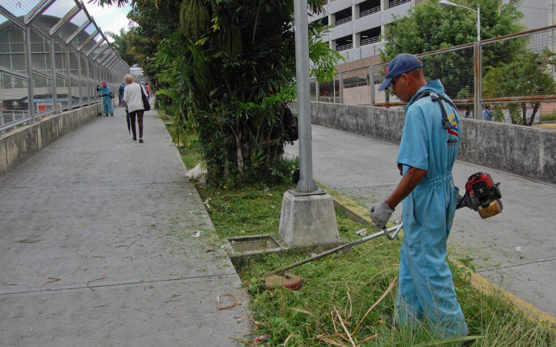 Gobernación de Miranda desmaleza áreas verdes del Metro Los Teques