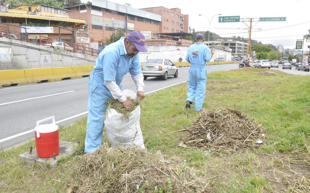 Continúa mantenimiento de la carretera Panamericana a la altura de Los Salias